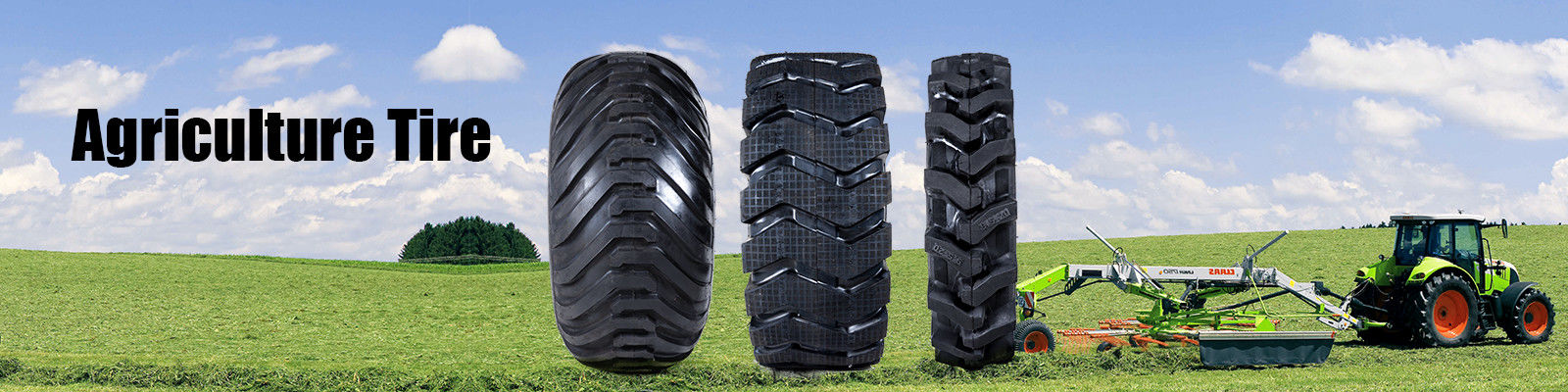 China best Light Truck Radial Tyres on sales